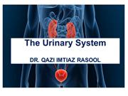 PPT INTRODUCTION TO  RENAL SYSTEM BY DR  QAZI IMTIAZ RASOOL