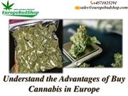 Absolute Best Online Cannabis  by Europe Bud Shop