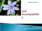 Self Incompatibility  akc