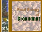 Floral Biology of groundnut