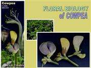 Floral Biology of cowpea