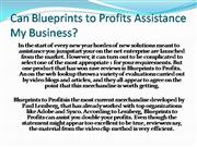 Can Blueprints to Profits Assistance My