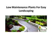 Low Maintenance Plants For Easy Landscaping
