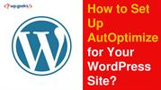 How to Set Up AutOptimize for Your WordPress Site