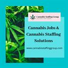 Cannabis Jobs & Cannabis Staffing SolutionsCannabis Jobs & Cannabis St