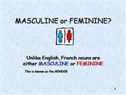 french: masculine or feminine?