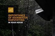 Importance of Rainwater Harvesting in Your House | PPD
