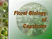 Floral Biology of capsicum