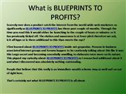 What is BLUEPRINTS TO PROFITS