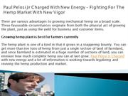 Paul Pelosi Jr Charged With New Energy – Fighting For The Hemp Market