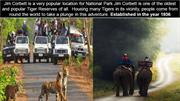 Weekend Getaways in Jim Corbett | Resorts in Jim Corbett