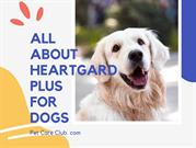 All About Heartgard Plus for Dogs