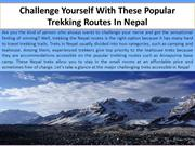 Challenge Yourself With These Popular Trekking Routes In Nepal