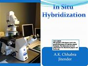 Insitu Hybridization......in crop plants