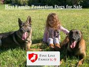 Best Family Protection Dogs for Sale | Fine Line Family K-9 |