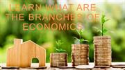 Learn What Are The Branches Of Economics
