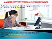 Importance of Malwarebytes Technical Support Number