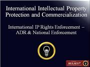 06-International IP Rights Enforcement-ADR-new
