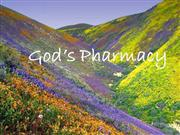 0748-God's_pharmacy