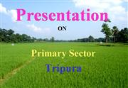 Presentation on Primary Sector by CS