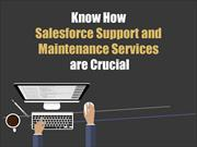 Know How Salesforce Support and Maintenance Services are Crucial