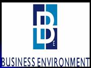 ENVIRONMENT EFFECT INTERNATIONAL BUSINESS