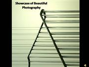Showcase of Beautiful Photography