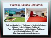 motels in salinas ca
