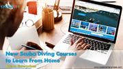 New Scuba Diving Courses to Learn From Home - Ocean Enterprises