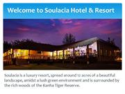 Get The Best Place To Stay In Kanha National Park   Hotels In Kanha