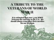 Tribute to WWII Veterans