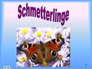 schmetterling prsentation