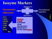 ISOZYME MARKERS