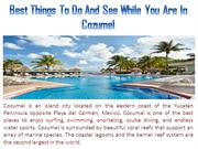Best Things To Do And See While You Are In Cozumel