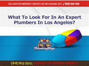 What To Look For In An Expert Plumbers In Los Angeles