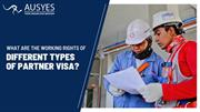 What are the Working Rights of Different Types of Partner Visa