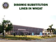 DISOMIC SUBSTITUTION LINES IN WHEAT