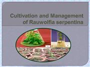 Cultivation and Management of Rauvolfia serpentina