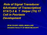 Role  of Stat3   protein & T -helper 17  cell -in psoriasis  Developme