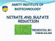 nitrate and sulphate cycle