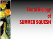 Floral Biology of Summer Squesh