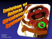 evolution_of_circulatory systems in animalswindows2007