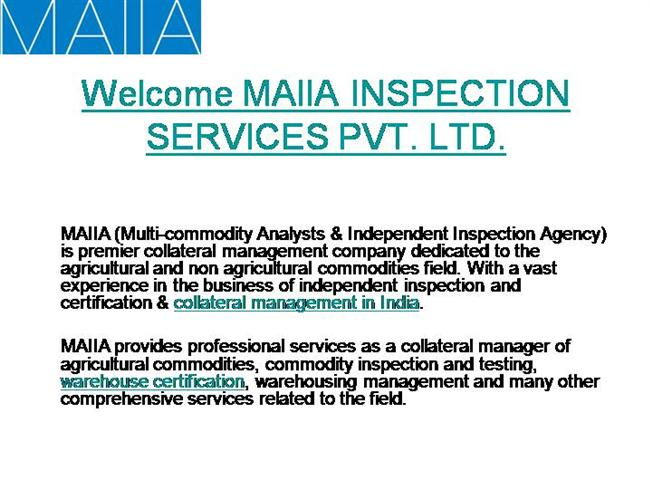Maiia Inspection, Collateral Manager |authorSTREAM