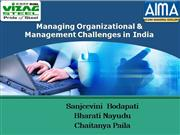 Managing Organizational and Management Challenges in In