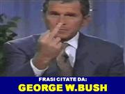 George Bush Crazy