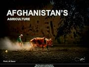 AFGHANISTAN - Agriculture