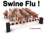best swine flu presentation