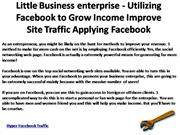 Little Business enterprise - Utilizing Facebook to Grow