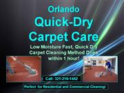 quick-dry discount rug cleaner 321-216-1442