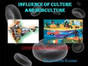 Consumer Behaviour - Influence of culture and subculture